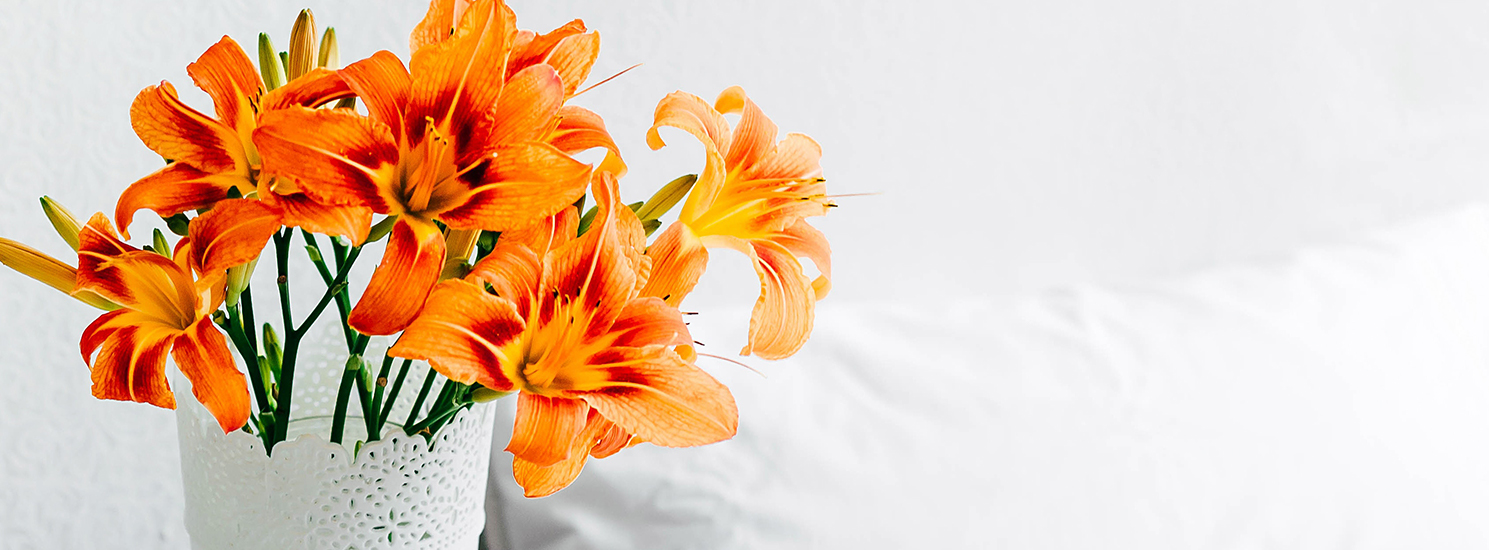 15% off Flowers Sitewide and Same Day Delivery Available.