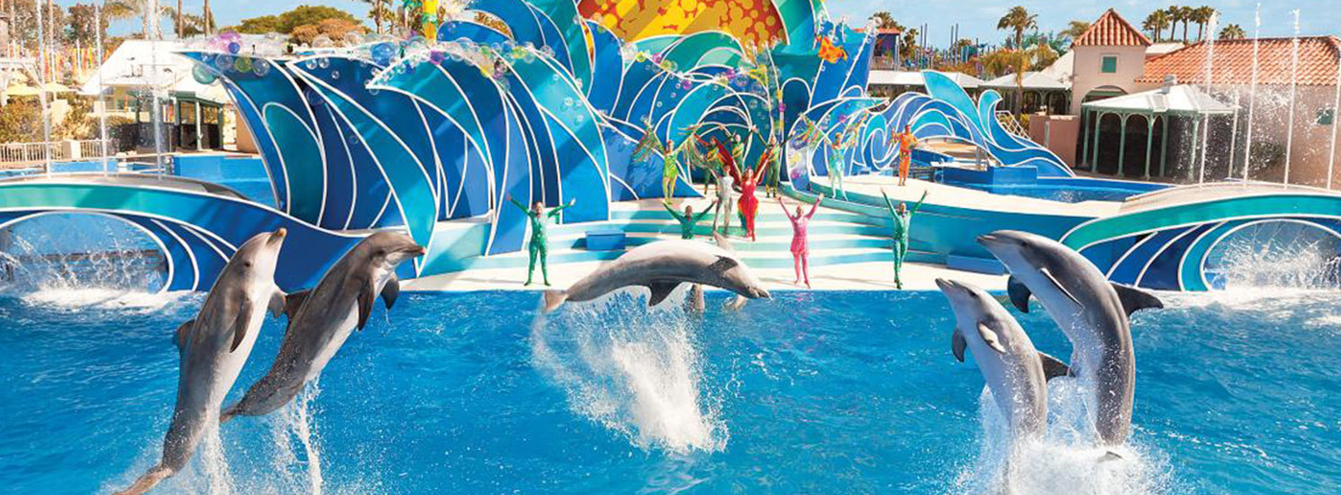 Free admission for veterans + 3 guests to SeaWorld Orlando, Texas and California (redeem by July 4, 2018)